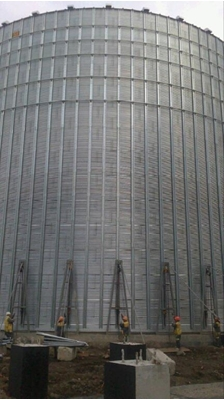 Feed Production Enterprise with a capacity of 30 t per hour, Uman