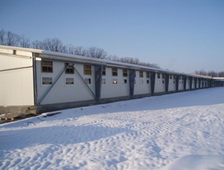 Picture for service SWINE BATTENING COMPLEX, ZHOVTNEVE VILLAGE, ODESSA REGION